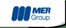 mer group logo